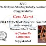 2014 Epic Award Finalist